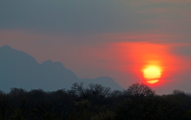 Karongwe sun
